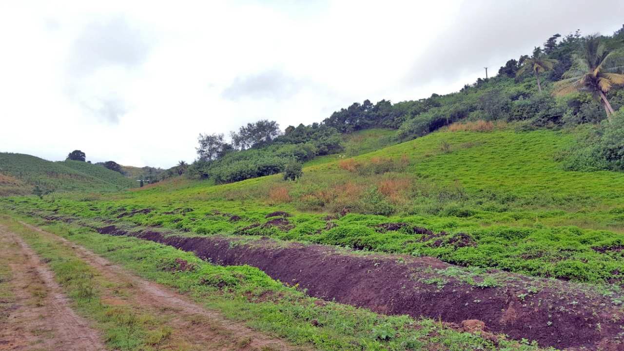 Waibogi, Malaqereqere, Sigatoka