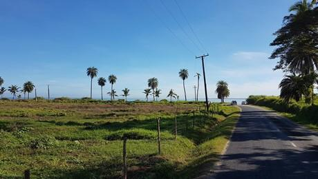 Wailoaloa, Nadi