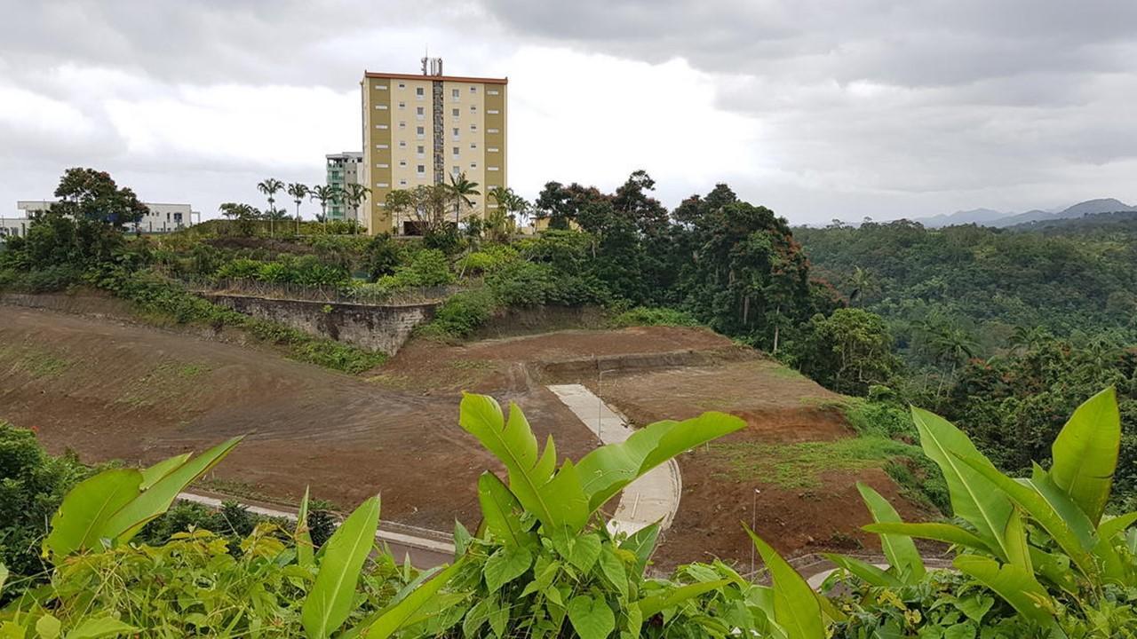 Wailoku, Tamavua