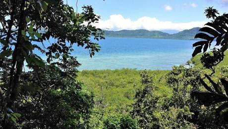 Lot 4, Nukudamu, Buca Bay
