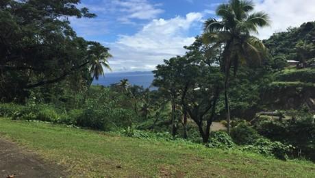 Naveria Heights, Savusavu
