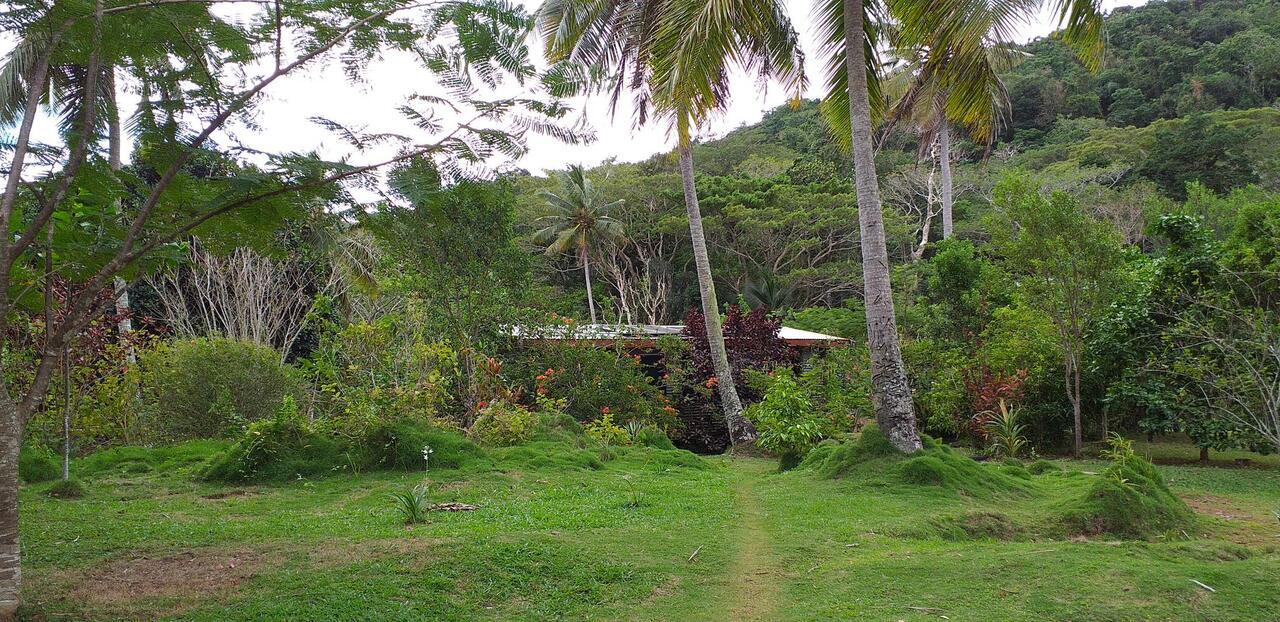 Lot 1, Matasawalevu, Dreketi