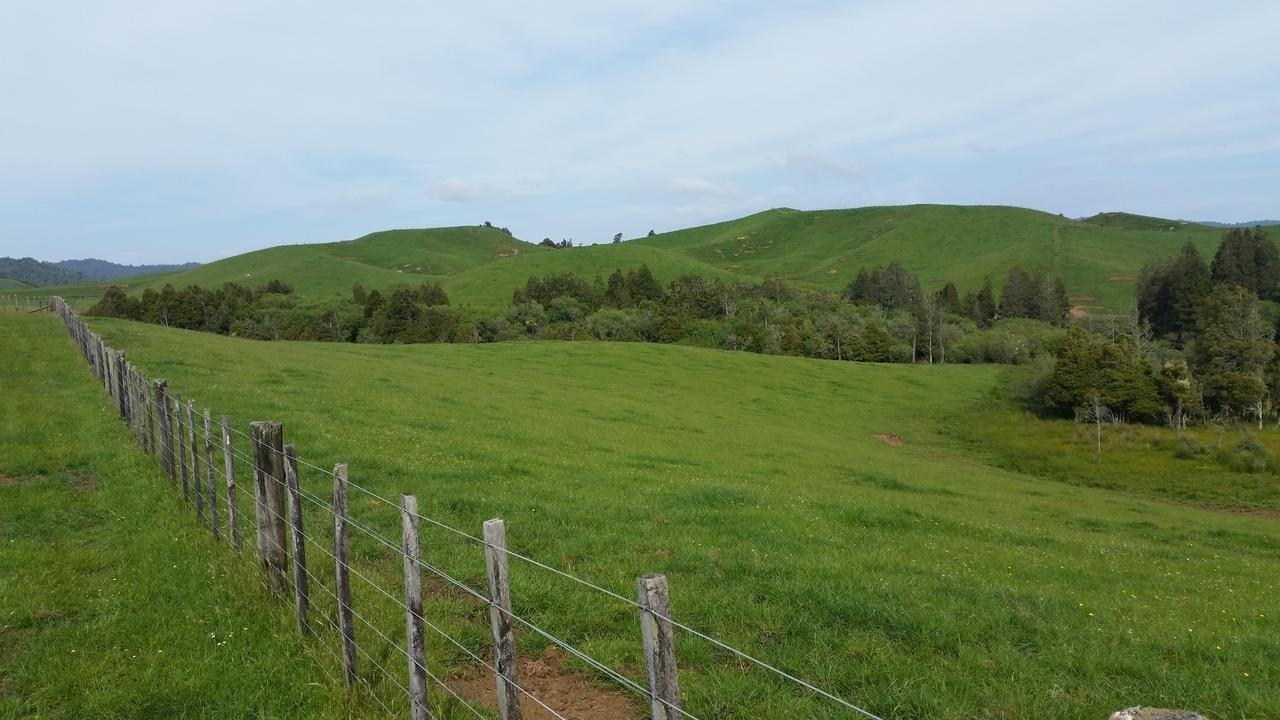 652 Kawhia Road, Te Mata