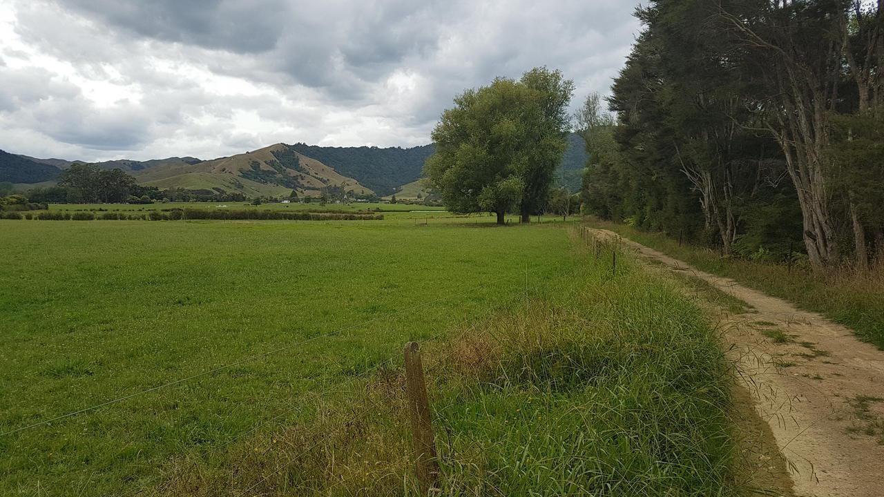 102 Mangatea Road, Te Hoe