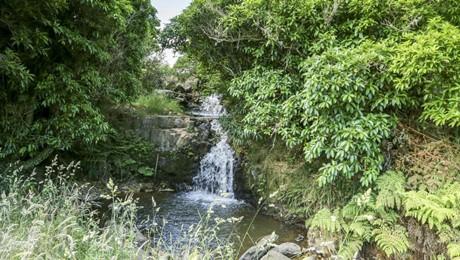 231, 233 (Lot2) & 233(Lot4) Pinnacle Hill Road, Mangatawhiri